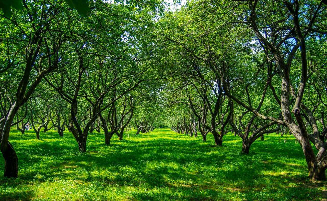 Click to enlarge image 3.jpg